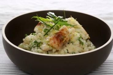 Herb risotto with sea bass picatta