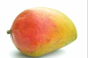 Comment eplucher une mangue